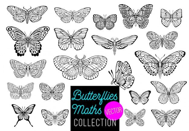 蝶の図面セット。手描きイラスト。