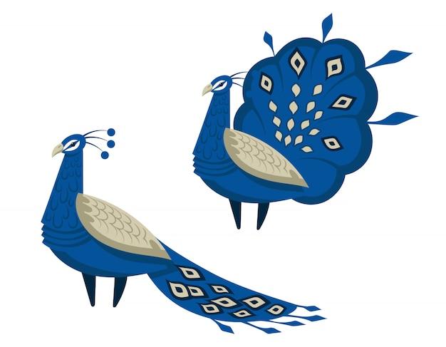 Павлин с красивым хвостом. птицы в мультяшном стиле, изолированные на белом фоне.