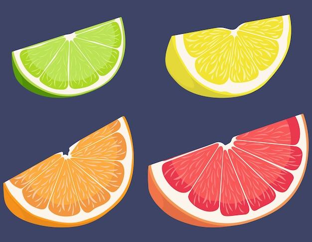 柑橘系の果物のセットです。レモン、ライム、オレンジ、グレープフルーツの漫画のスタイル。