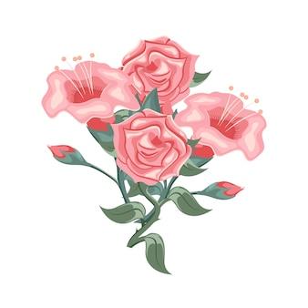 Набор красивых розовых роз и тюльпанов
