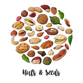 天然ナッツと種子のイラスト