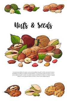 自然なナッツと種子のテンプレートイラスト