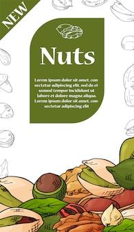 ナッツと種子のイラスト