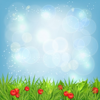 Фон с еловыми ветками и ягодами падуба