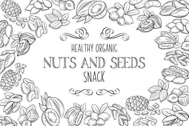 手描きスケッチナッツと種子