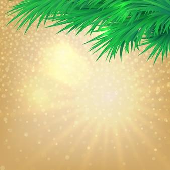 Рождественский фон с боке и ветвями деревьев