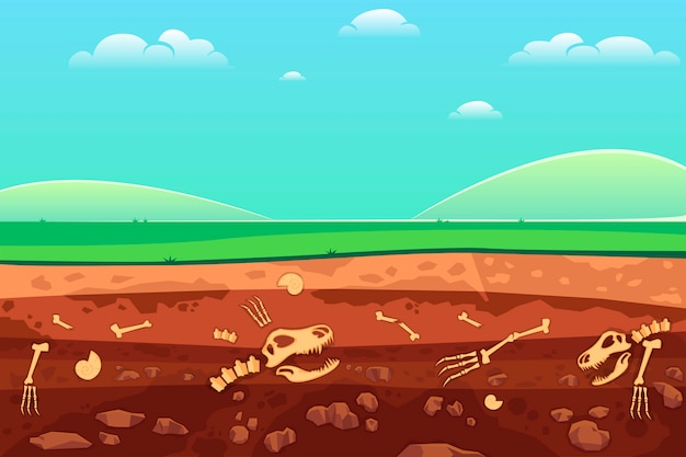 土壌層の考古学の骨。