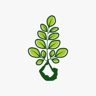 モリンガのロゴデザイン