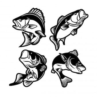 Набор большого баса черного и белого. рыболовный логотип