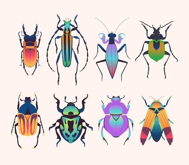 Набор рисованной жуков, насекомых.