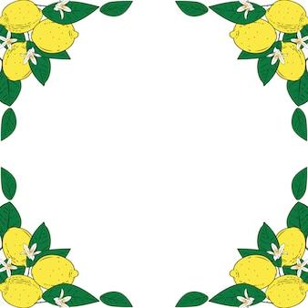 花のフレームと熱帯の柑橘系レモン果実。夏のカラフルな背景