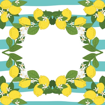 テキスト付きのカードテンプレート。ビンテージのターコイズブルーの線形背景に熱帯の柑橘類のレモンフルーツフレーム。ベクトルイラスト