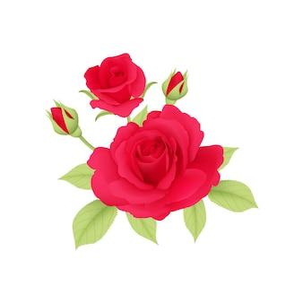 ブーケの赤いバラのベクトル