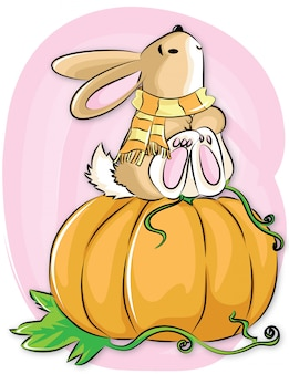 Кролик со скрафтом садится на тыквы