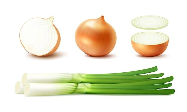 Набор свежих целых и нарезанных желтых луковиц с зеленым луком крупным планом на белом фоне