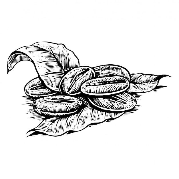 Лист кофе