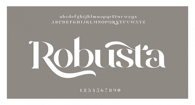 エレガントな素晴らしいアルファベットのフォントと番号。古典的なレタリング最小限のファッションデザイン。タイポグラフィフォントは通常の大文字と小文字です。ベクトルイラスト