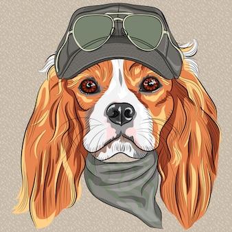 Симпатичная хипстерская собака породы кавалер кинг чарльз спаниель