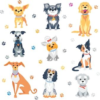 Установите цвет собаки