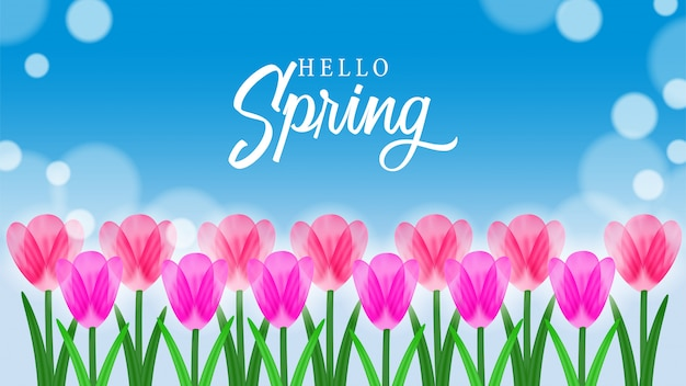 春の空とチューリップの花の花