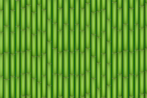 緑の竹のテクスチャ