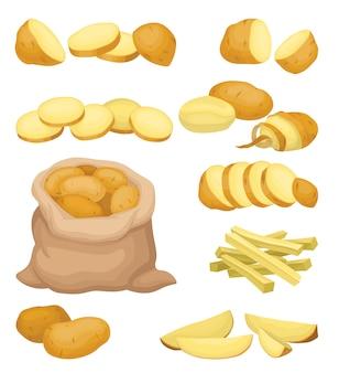 Набор иконок картофеля. натуральный сельскохозяйственный продукт. сырой овощ. органическая и здоровая пища. здоровое питание
