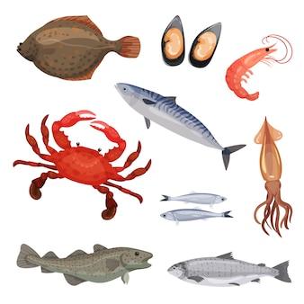 さまざまな魚介類のセットです。魚、カニ、軟体動物。海洋生物。海洋生物。詳細なアイコン