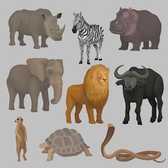 野生のアフリカの動物セット、カバ、象、キリン、サイ、カメ、バッファロー、シマウマ、ライオン、ヘビのイラスト