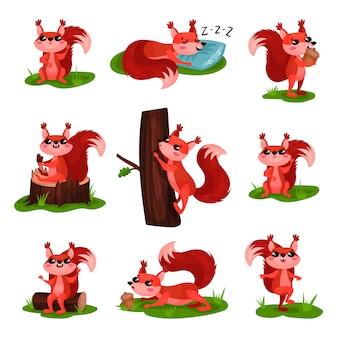 Плоский набор мультфильм белка в различных действиях. спит, взбирается на ствол дерева, ест мороженое и желудь, гуляет по траве