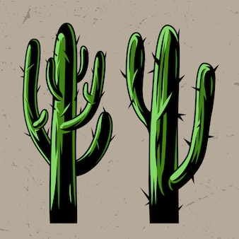 緑のサボテンの植物の概念