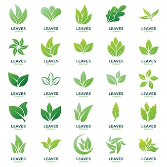 葉ロゴベクトルパック