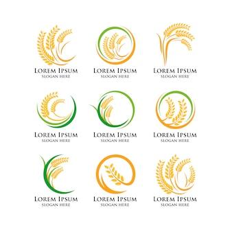 農業小麦のロゴテンプレート