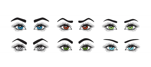 色の目の形をした眉毛のセット。