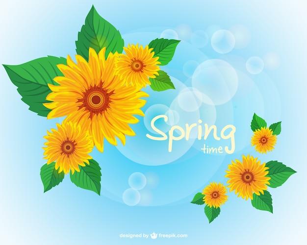 春のひまわりの壁紙