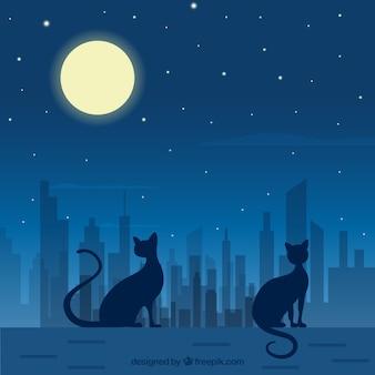 夜の猫のベクトルアート