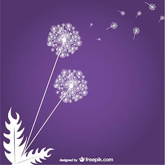 紫色の背景にタンポポ