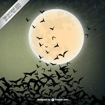 コウモリのシルエットとハロウィーンの背景