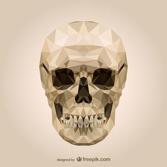 多角形の頭蓋骨ベクトル