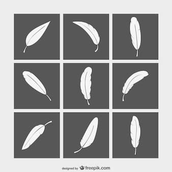 Черно-белые перья коллекция