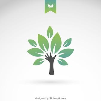 Зеленый эко дерево