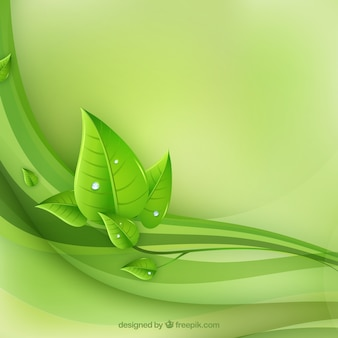 エコ葉と緑の波のベクトル