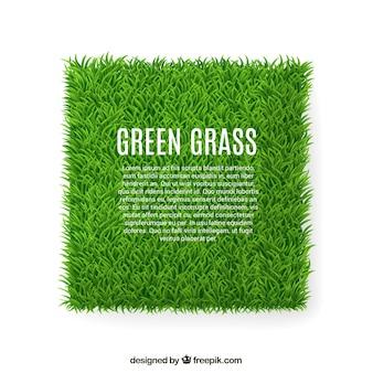 Зеленая трава баннер