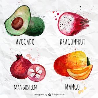 Коллекция акварель фрукты