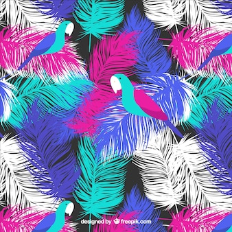 オウムの羽のパターン