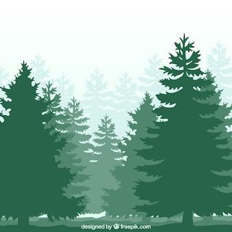 森のシルエット
