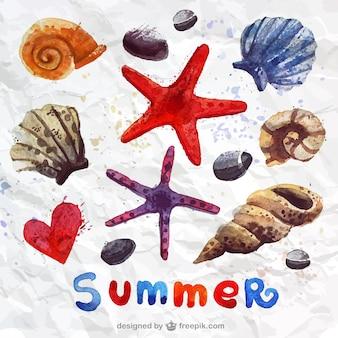 手描きの貝殻