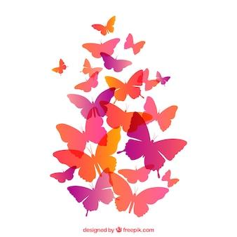 Бабочки полет