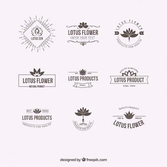 Цветок лотоса логотипы