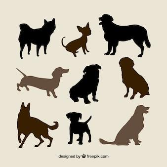Разнообразие пород собак силуэты