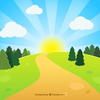 緑の牧草地の道